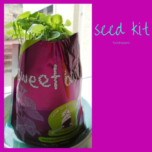 Raise money selling cute seed kits