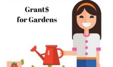 $2,000 Grants for School Gardens