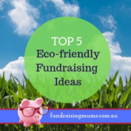Top 5 Eco Fundraisers