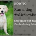 How to hold a dog walkathon and other pet themed fundraisingi deas