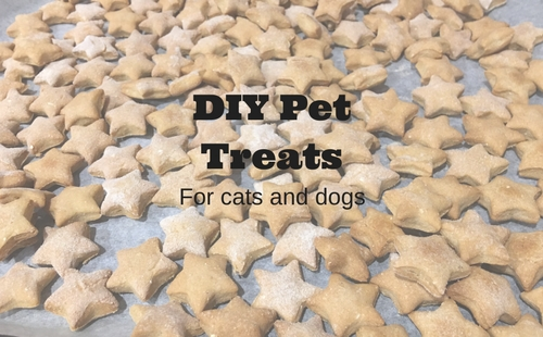 Three ingredient pet treats for cats and dogs | Fundraising Mums