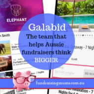 Galabid: The Team that Helps Aussie Fundraisers Think Bigger